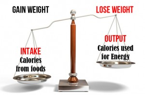 The Calorie Balance by Martin Knibbs