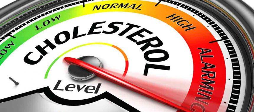 Cholesterol – Friend or Foe by Gareth Hogg